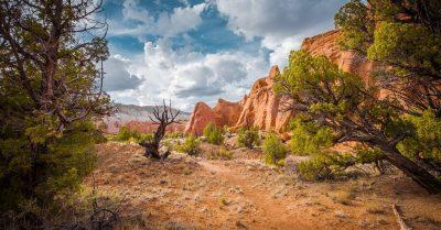Hiking in Kodachrome Basin (Utah)