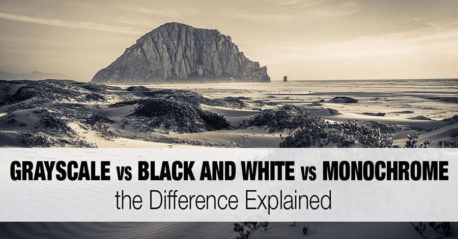 Grayscale vs Black and White vs Monochrome