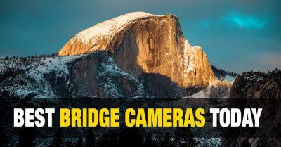 Best Bridge Cameras for Landscapes