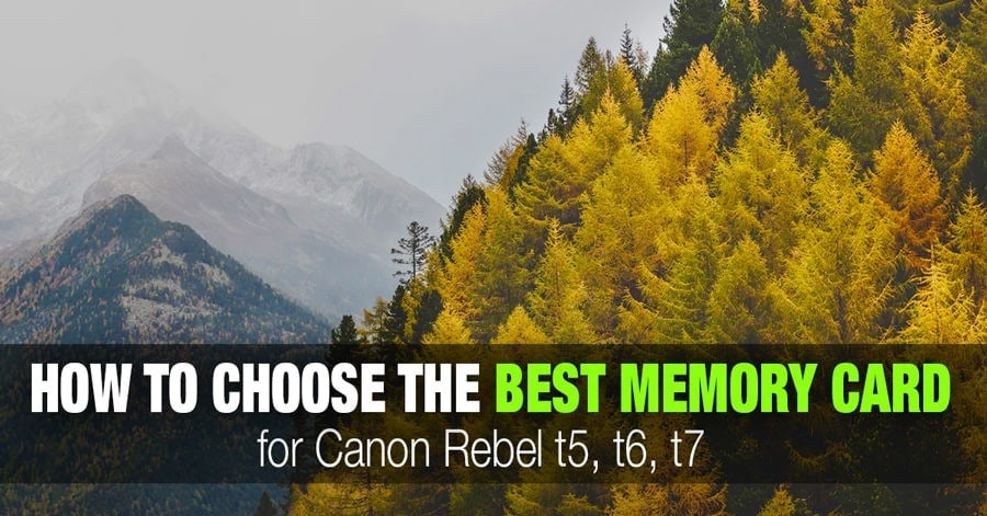 Tips for Selecting the Best SD Memory Cards for Canon Rebel t5, t6, or t7 1