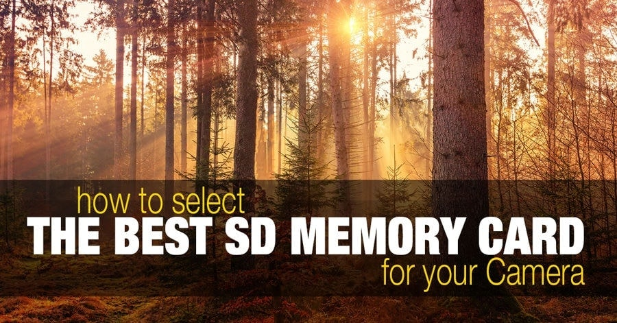 How to Select the Best SD Memory Card for Your DSLR or Mirrorless Camera 1