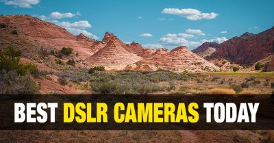 Best DSLR Camera for Sports and Wildlife