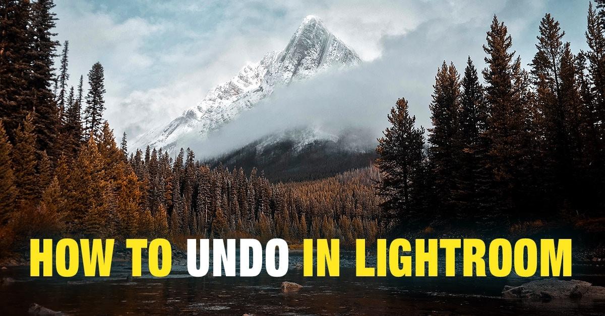 How to Undo in Lightroom (6 Different Ways)