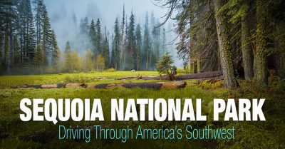 Sequoia National Park – Southwest Trip: Day 8,9