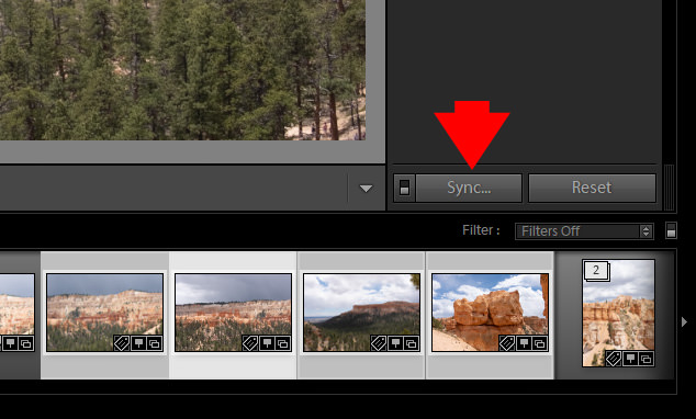 How to Batch Edit in Lightroom (4 Methods) 2