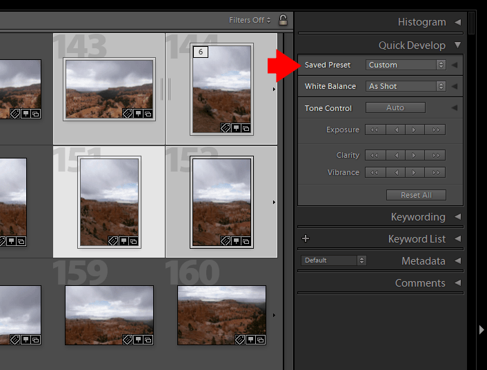 How to Batch Edit in Lightroom (4 Methods) 5