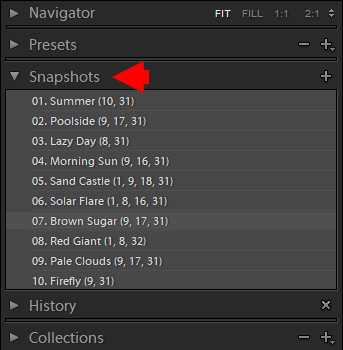 How to Duplicate Image in Lightroom: Virtual Copies and Snapshots Methods 3
