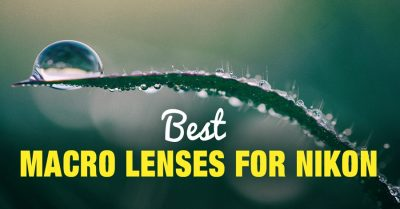 Top 6 Best Macro Lenses for Nikon (DX & FX)
