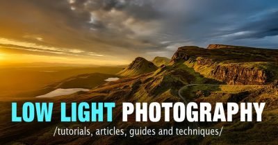 How to Select the Best Camera for Wildlife Photography 3