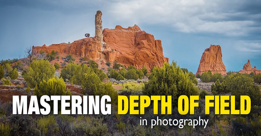 Mastering Depth of Field in Photography