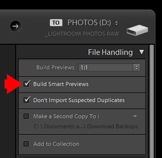 Lightroom Smart Previews - When, Why and How to Use Them 6