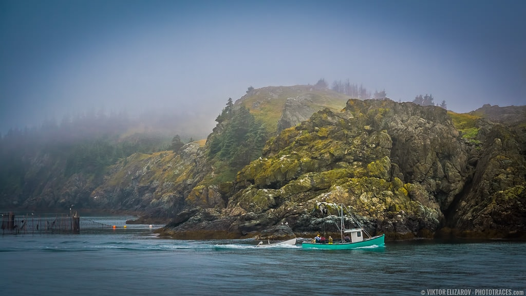 The Grand Manan Island – the Lost World No More 1