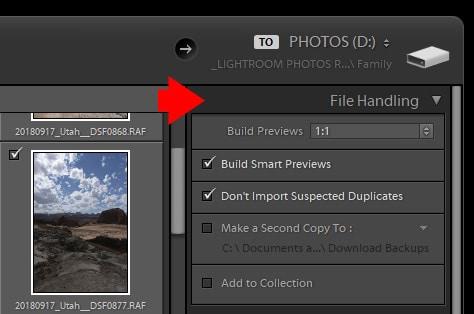 Lightroom Import Module - File Handling
