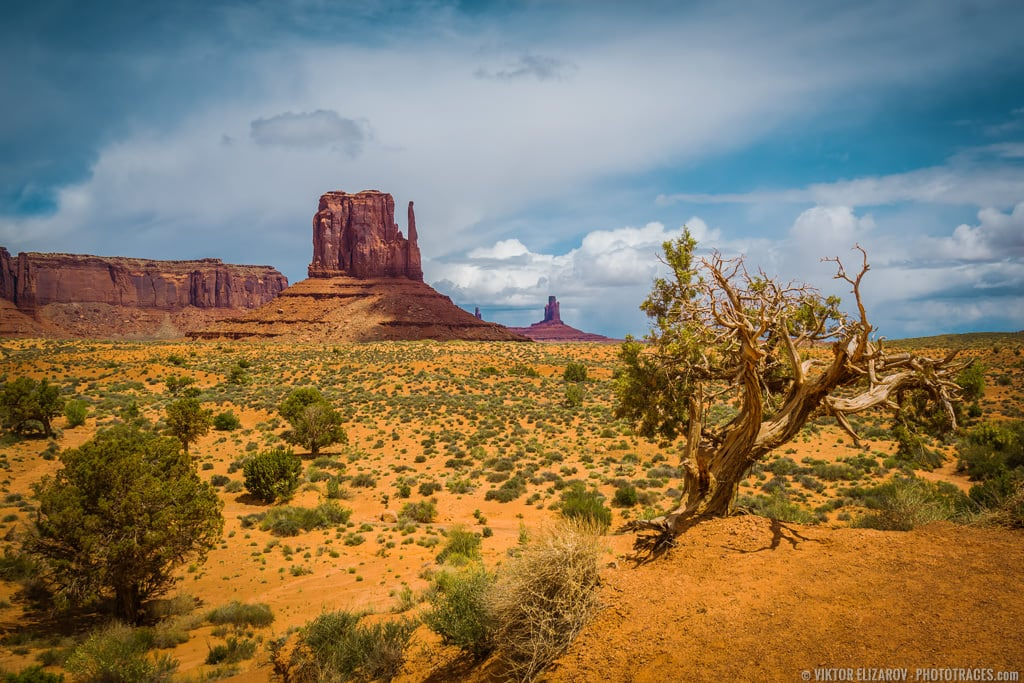 Guide to Monument Valley Scenic Drive 6