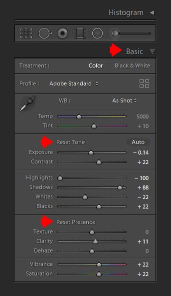 Lightroom's Secret Weapon - Alt/Opt Keyboard Modifiers 2