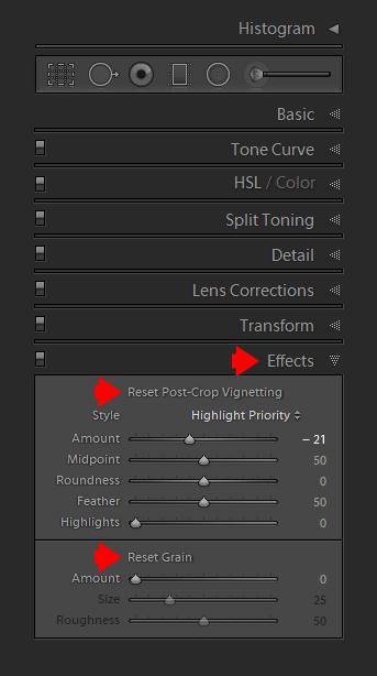 Lightroom's Secret Weapon - Alt/Opt Keyboard Modifiers 18