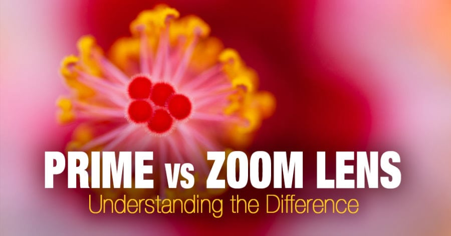 Prime vs Zoom Lens: Understanding the Difference