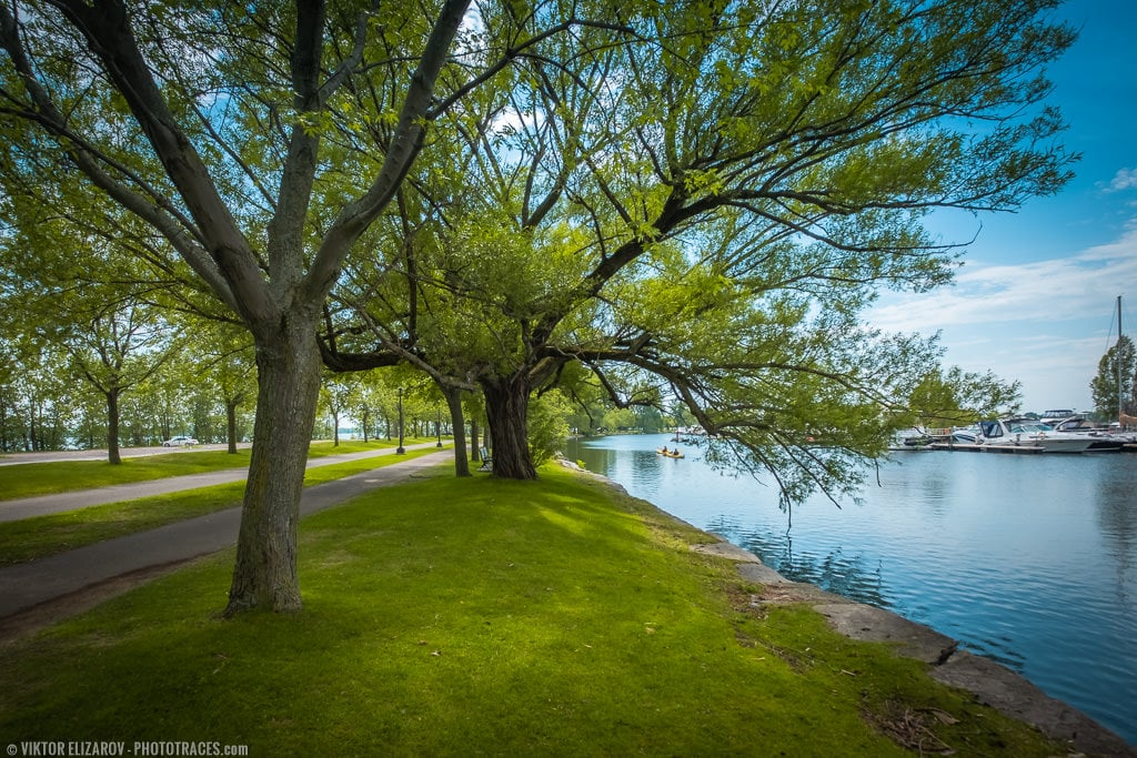 Wide Angle Lens: The Ultimate Guide 2
