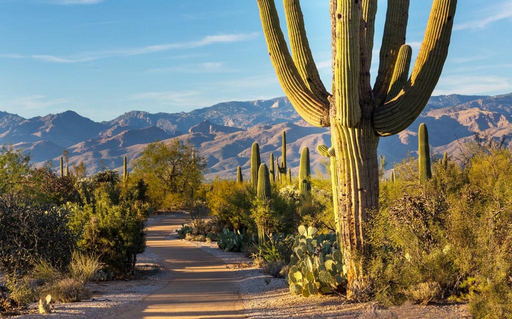 Arizona Landscapes - Arizona Top Photography Locations 4