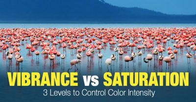 Vibrance vs Saturation – 3 Levels to Control Color Intensity