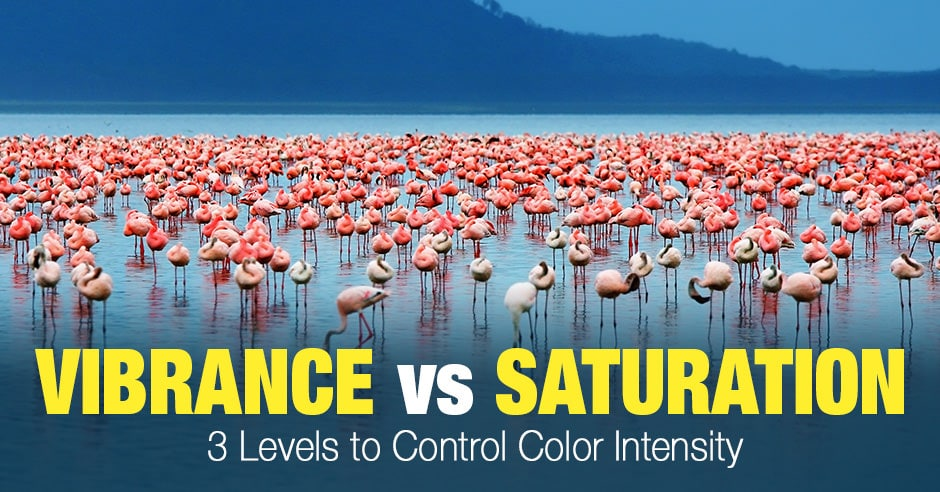 Vibrance vs Saturation - 3 Levels to Control Color Intensity