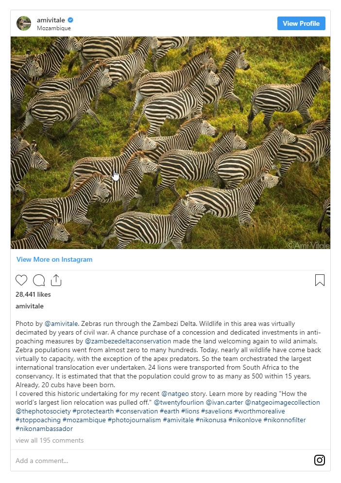 Famous Wildlife and Nature Photographers 2