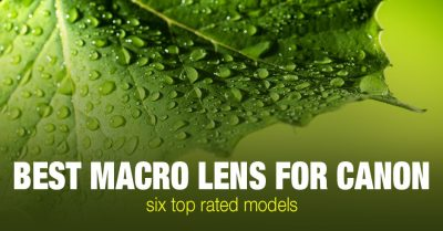 Top 6 Best Macro Lens for Canon (EF & EF-S)