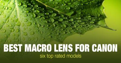 6 Best Macro Lens for Canon