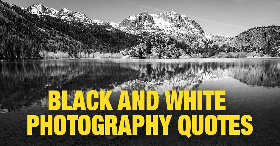 Black and White Photography Quotes