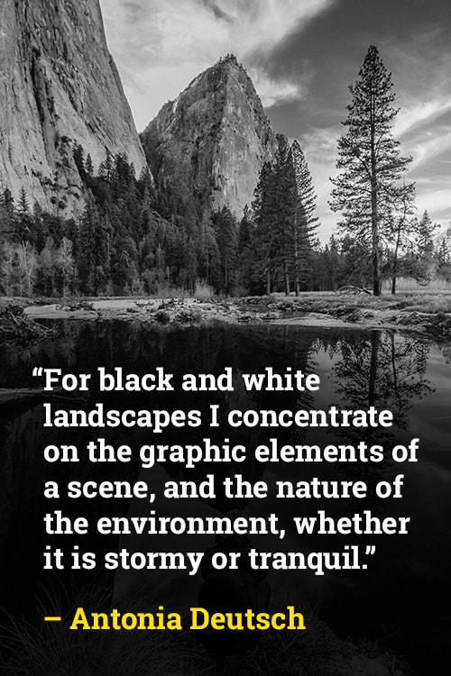 Antonia Deutsch on Black and White and the Environment
