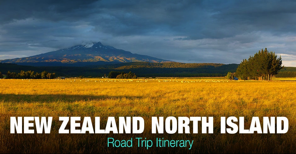New Zealand North Island Road Trip for Travelling Photographers