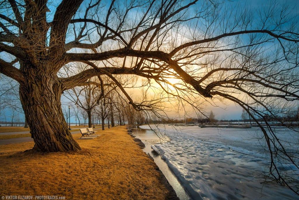 6 Best Nikon Landscape Lens (DX & FX) 1