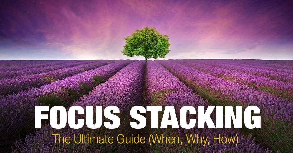 Focus Stacking: the Ultimate Guide (When, Why, How)