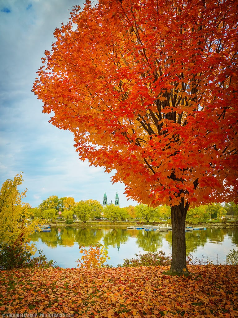 12 Fall Photography Ideas and Tips for Better Foliage Photos 10
