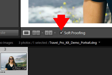 Lightroom Soft Proofing - Step-By-Step Workflow 1