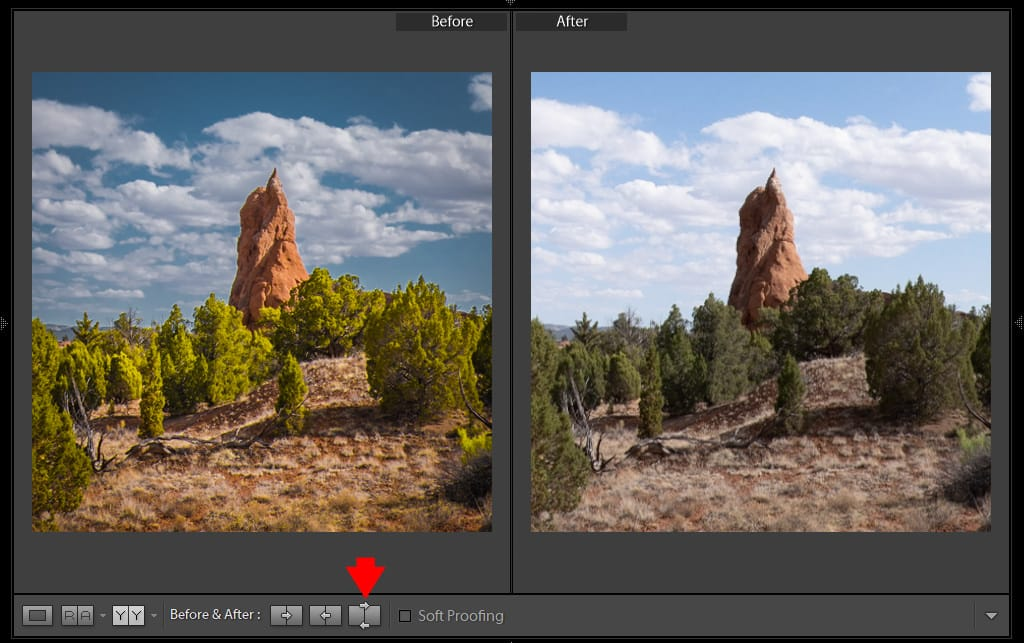 Lightroom Before and After: 7 Ways to Visualize Your Edits 8