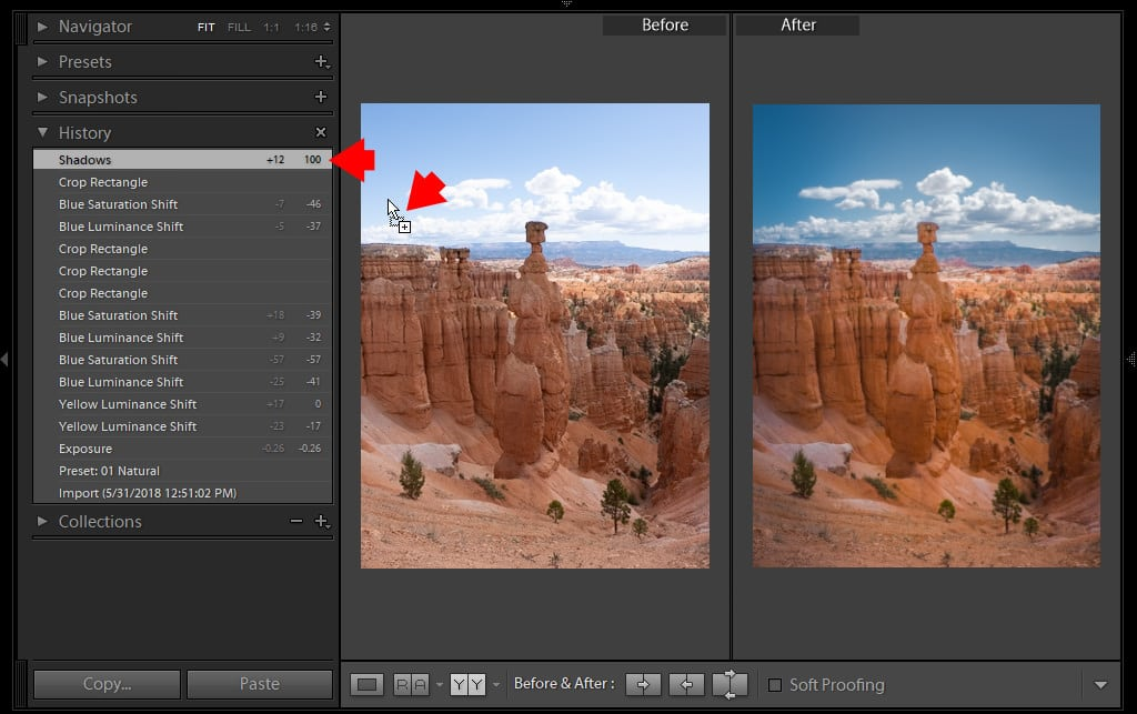 Lightroom Before and After: 7 Ways to Visualize Your Edits 9