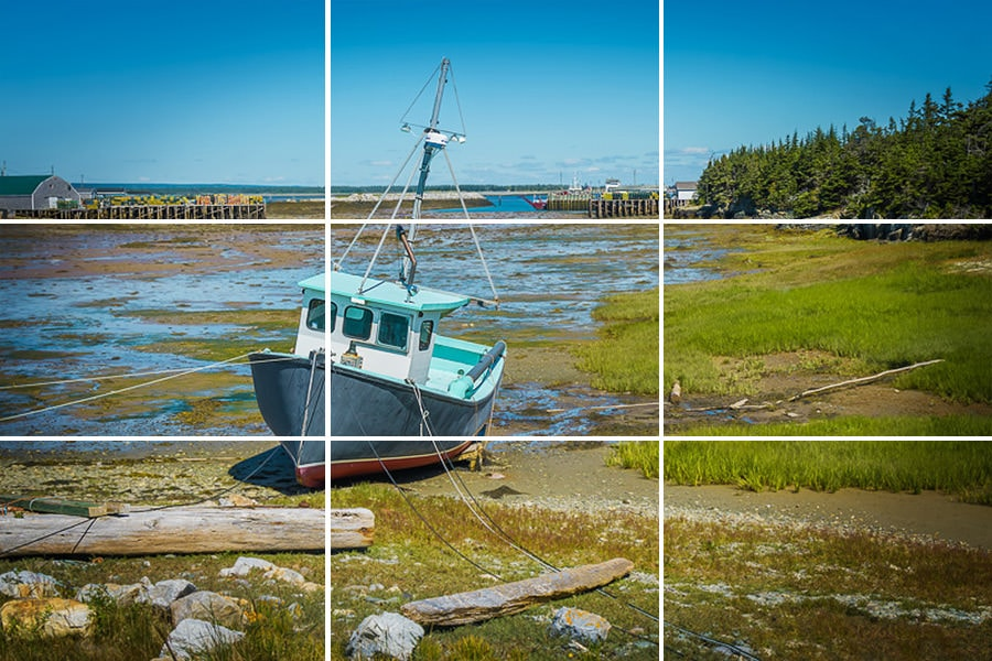 Rule of Thirds in Photography Explained (Examples + Visuals) 2