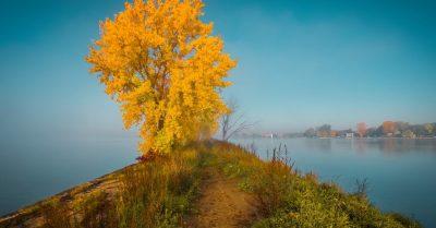 Autumn Foggy River (Montreal)