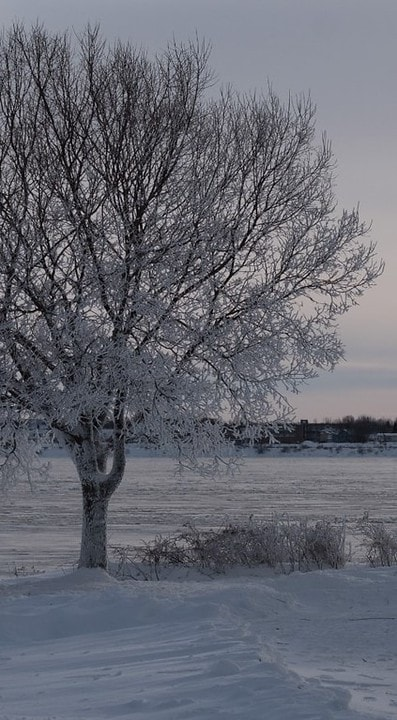Snow Photography Tips: How to Photograph and Edit Snowy Scenes 2