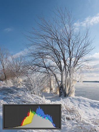 Snow Photography Tips: How to Photograph and Edit Snowy Scenes 5
