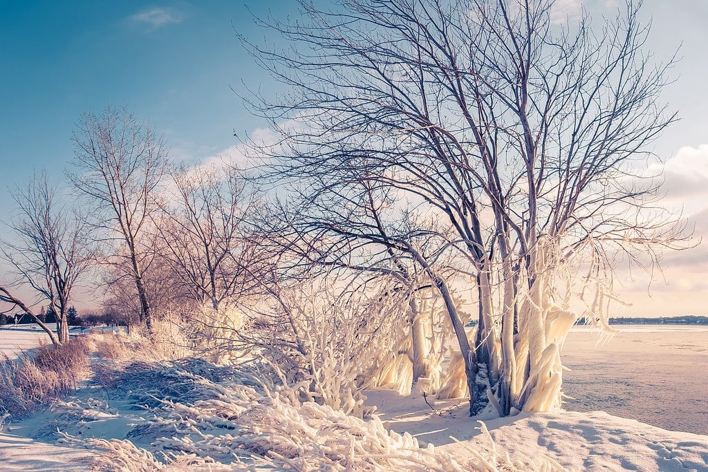 Snow Photography Tips: How to Photograph and Edit Snowy Scenes 9