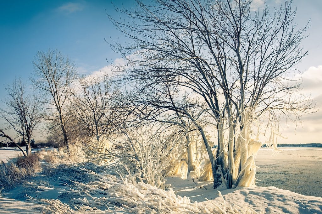Snow Photography Tips: How to Photograph and Edit Snowy Scenes 10