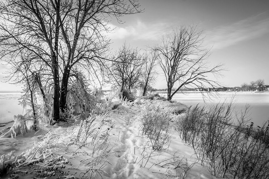 Snow Photography Tips: How to Photograph and Edit Snowy Scenes 12