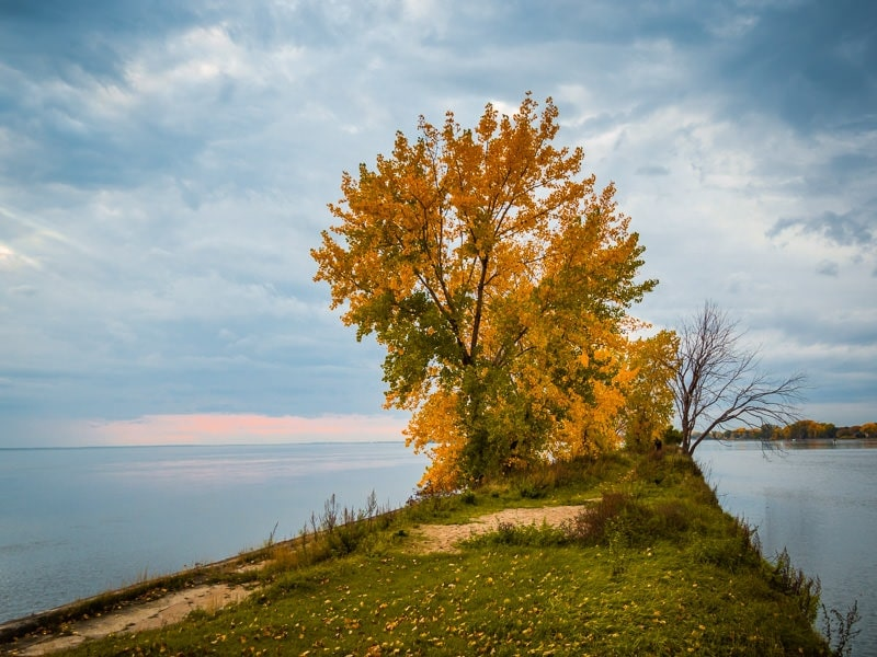 Store: FALL Colors Preset Collection 6