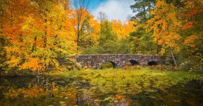 Stone Bridge & Explosion of Colors (Montreal)