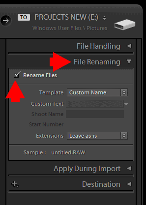 How to Rename Files in Lightroom for Better Image Discovery & Organization 1