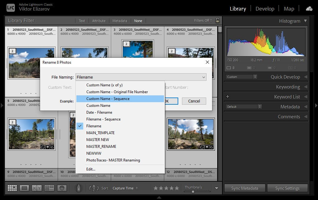 How to Rename Files in Lightroom for Better Image Discovery & Organization 4