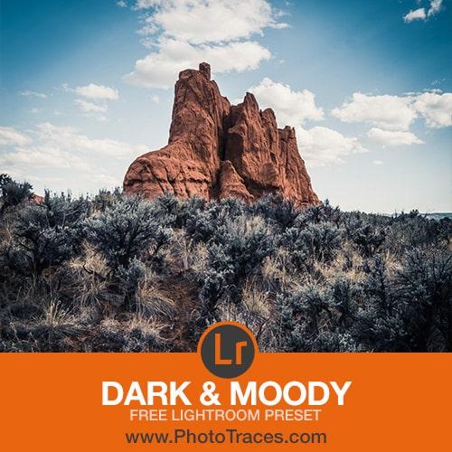 Free Dark and Moody Lightroom Preset 1
