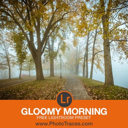 Free Gloomy Morning Lightroom Preset 1
